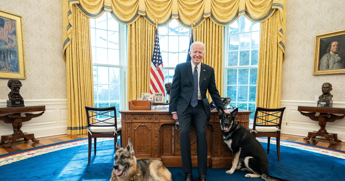 Biden Winks, Allows Violent Members Back In