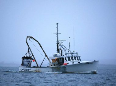 Fisherman Makes Frightening Discovery, Then the Navy Gets Called In